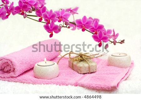 Bathroom Beauties - stock photo