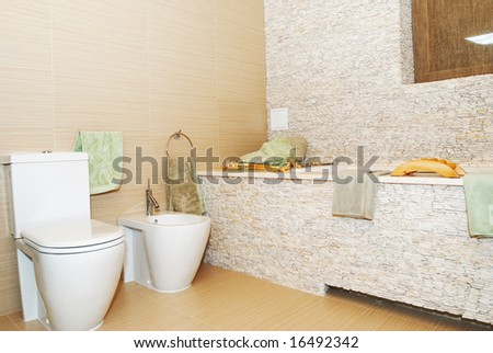 Bathroom interior in private house