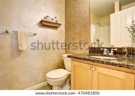 Bathroom interior with vanity cabinet, big mirror and toilet. Northwest, USA