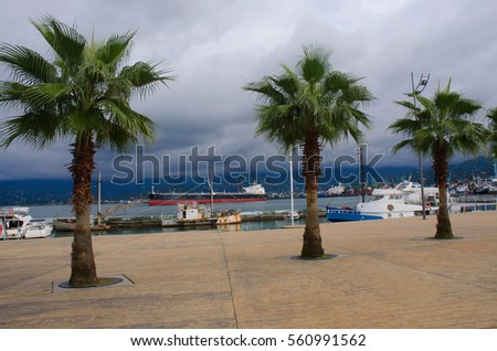 Batumi seafront with palm trees,motor boats and cargo ships at sea port.,overcast weather