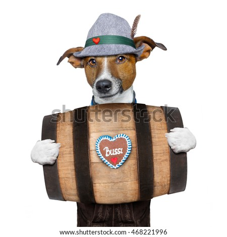 bavarian german jack russell dog with  gingerbread and hat, behind barrel,  isolated on white background , ready for the beer celebration festival in munich