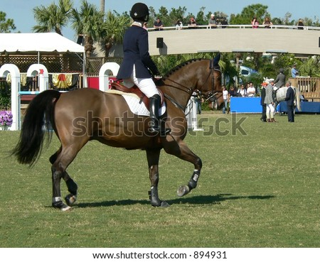 Bay horse and rider on grassy field with spectators in the distance