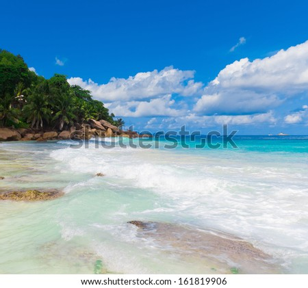 Bay Jungle Summertime  - stock photo