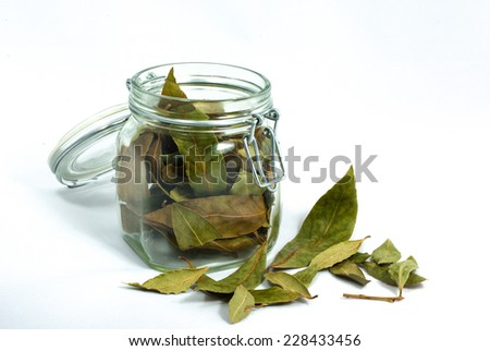 Горло лечение лавровым листом