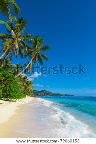 Bay Palms Summertime - stock photo