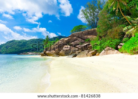 Bay Palms Tranquility - stock photo