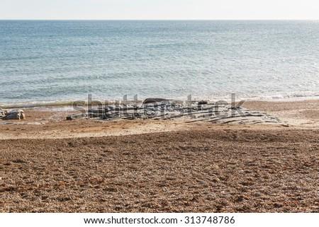Beach and Sea - Brook Bay, Isle of Wight - stock photo