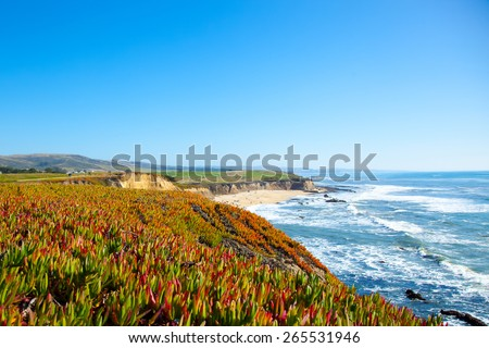 Beach and seaside cliffs at Half Moon Bay California.  Ice plants.  Sour fig plants. - stock photo