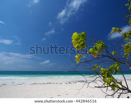 Beach at Kei Island in the Moluccas - stock photo