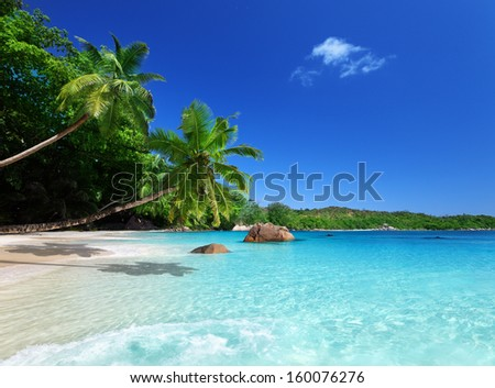 beach at Praslin island, Seychelles  - stock photo