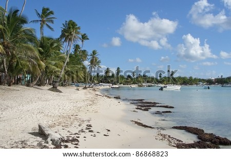 beach at the Dominican Republic, a island of Hispanola wich is a part of the Greater Antilles archipelago in the Carribean region - stock photo
