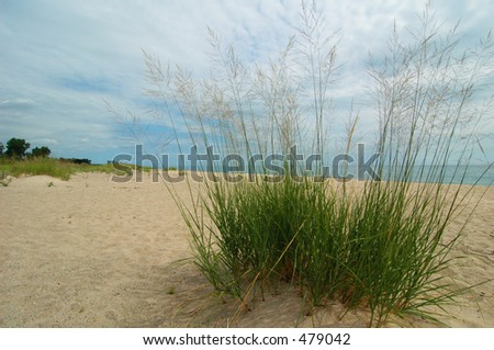 Beach at the Dunes - stock photo