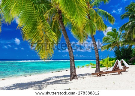 Beach beds under coconut palm trees with an ocean view, Rarotonga, Cook Islands - stock photo