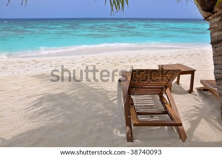 beach chair under palm tree at the ocean front