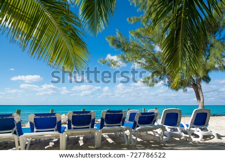 Beach chairs and palm branches