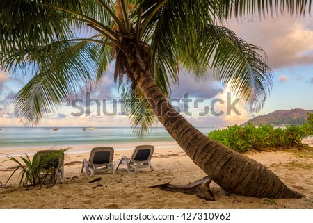 Beach chairs under a palm tree on a tropical island, Praslin, Seychelles - stock photo