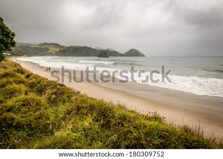 Beach Coromandel Peninsula, New Zealand. - stock photo