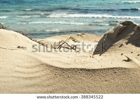 Beach dune and shoreline - stock photo