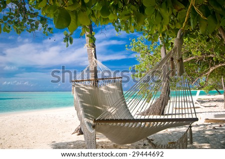 Beach Hammock under palm trees - stock photo