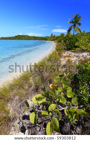 Beach in British Virgin Islands - stock photo
