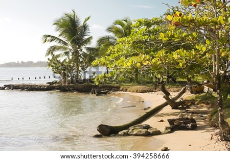Beach in Panama - stock photo