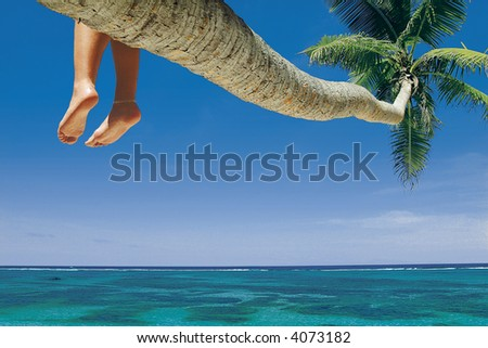 Beach, La Digue, Seychelles - stock photo