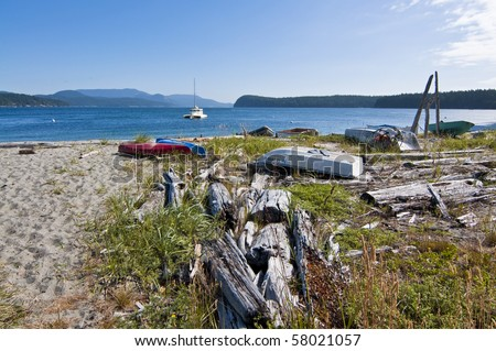 Beach landscape at Lopez Island looking out into Puget Sound in Washington on a beautiful sunny day