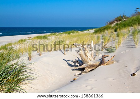 Beach landscape at the Baltic sea, Poland.  - stock photo