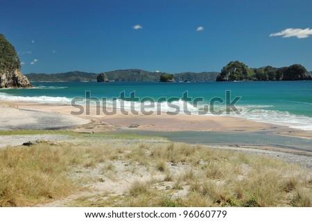 Beach landscape close to Hahei - New Zealand - stock photo