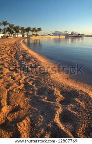 Beach line, boats and palms on horizon