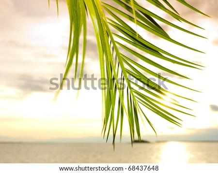 Beach Ocean Outdoor - stock photo