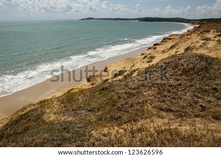 Beach of Pipa, Praia de Pipa.Brazil - stock photo