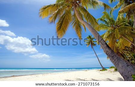Beach of Samoa Island, Santo Domingo - stock photo