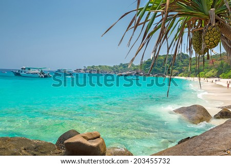 Beach of Similan Koh Miang Island in national park, Thailand  - stock photo