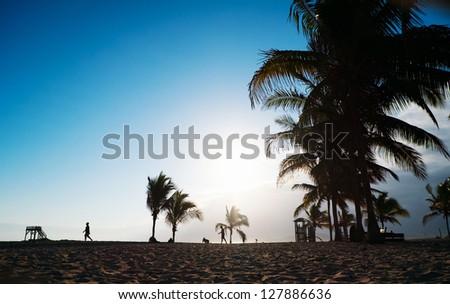 Beach on Galapagos Isabela island, Ecuador at sunset - stock photo