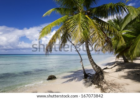 Beach on the tropical island. Clear blue water, sand and palm trees. Beautiful vacation spot and bathings. - stock photo