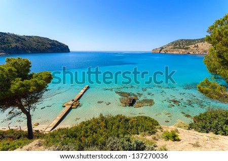 Beach pine trees turquoise sea bay mountains wide view, Camp de Mar, Majorca island, Spain - stock photo