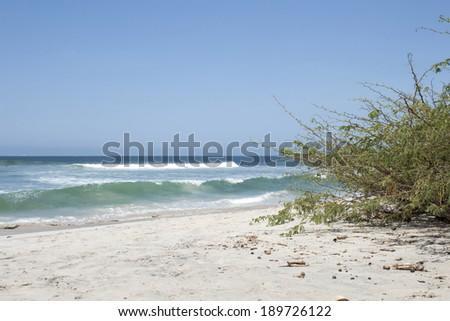 Beach, punta de mita - stock photo