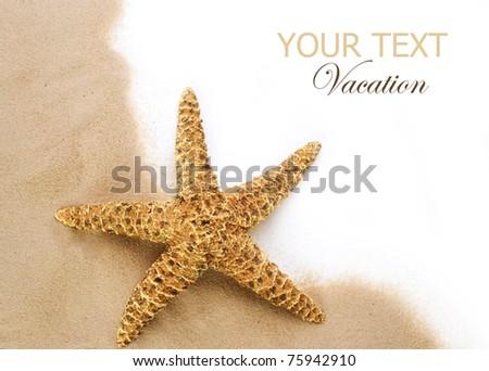 Beach Sand and Seastar border - stock photo