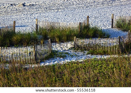 Beach sand,sea grass and fences landscape - stock photo