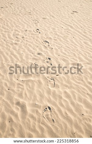 Beach sand with footprints - stock photo