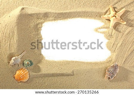 Beach sand with shells and starfish and a place for an inscription - stock photo