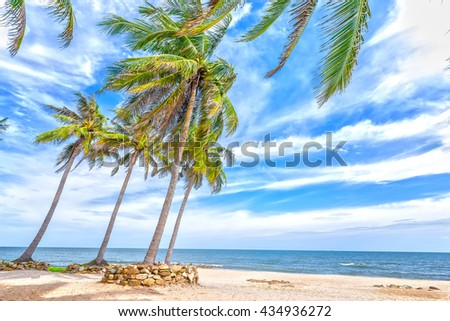 Beach side coconut with high palm trees leaning towards sea, distance cloudy sky beautiful, all create idyllic beauty, tranquility, peace as weekend resort here - stock photo