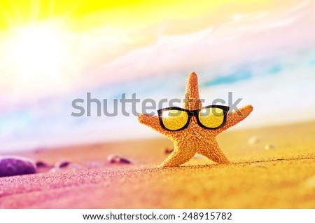 Beach. Starfish in sunglasses on the seashore - stock photo