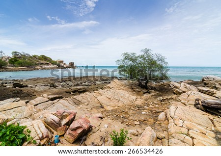 Beach tree rock and blue sea in Thailand - stock photo