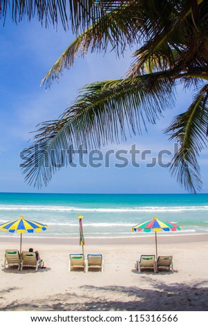 Beach umbrella and chairs under coconut palm tree