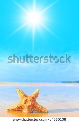Beach View On a Sunshine Day
