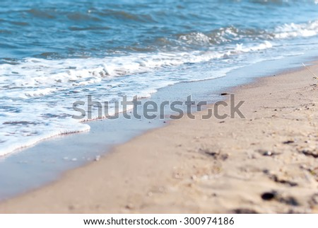 beach, wave foam, shells and pebbles on the sand on a summer day, selective focus, toned photo