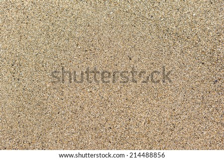 Beach Wet Sand Texture Macro - stock photo