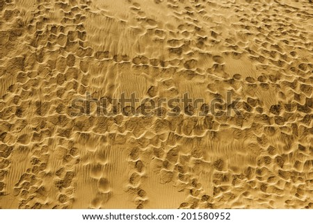 beach with marks - footprints - background - stock photo